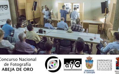 Sustitución de jurado en el Concurso Nacional de Fotografía ABEJA DE ORO